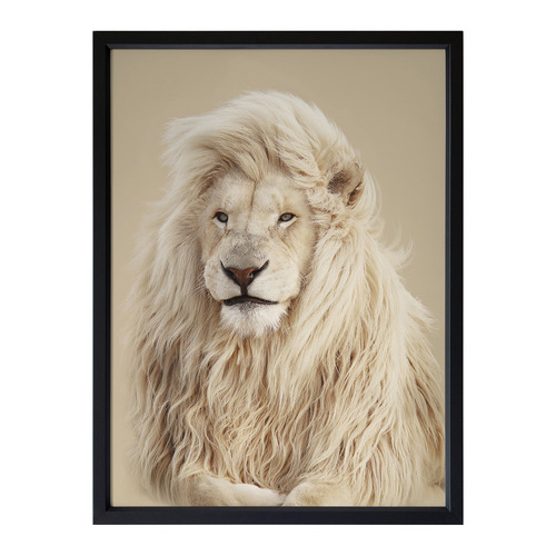 Urban Road Lion King Framed Printed Wall Art