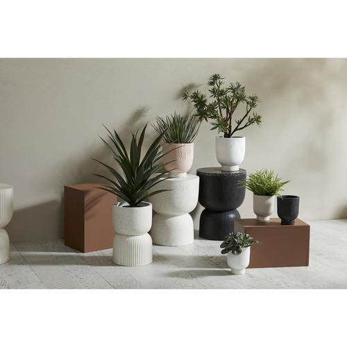 The Home Collective Etiene Ceramic Dual Planter Pots