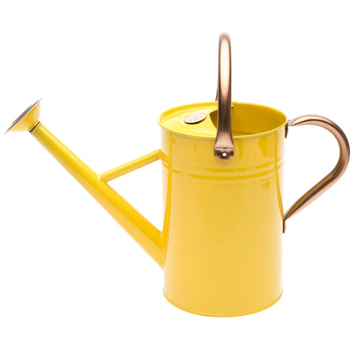 Brunnings 4.5L Terence Metal Watering Can