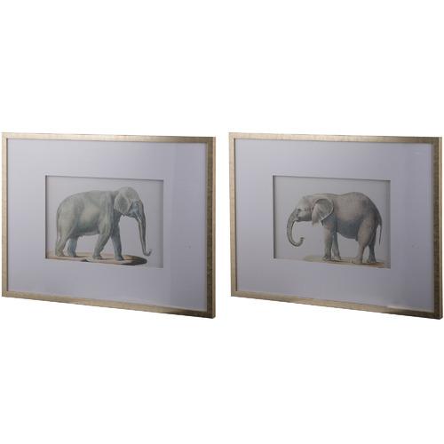 The Decor Store 2 Piece Elephant Framed Print Set