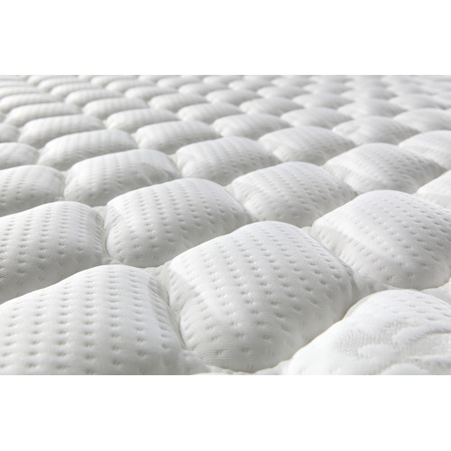 Southern Stylers Memory Pillow Top Roll Mattress