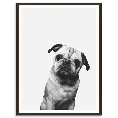 Our Artists' Collection Pug Printed Wall Art