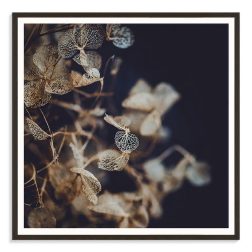 Our Artists' Collection Delicate I Printed Wall Art