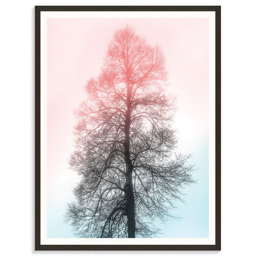 Our Artists' Collection Pastel Vista I Printed Wall Art