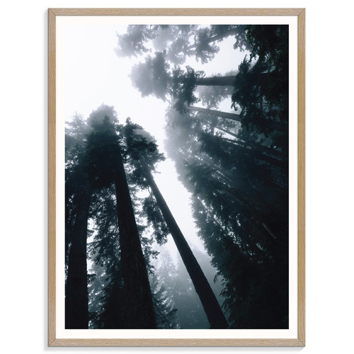 Our Artists' Collection Dark Shadows I Printed Wall Art