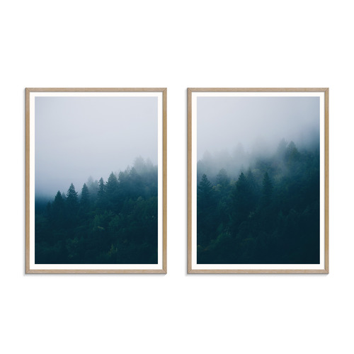 Our Artists' Collection 2 Piece Mountain Forrest Printed Wall Art Set
