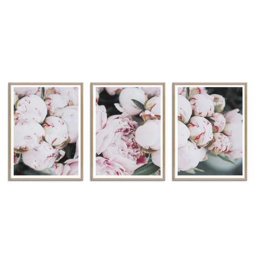 Our Artists' Collection Pale Poise Printed Wall Art Triptych