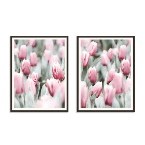 Our Artists' Collection 2 Piece Tulip Dance Printed Wall Art Set