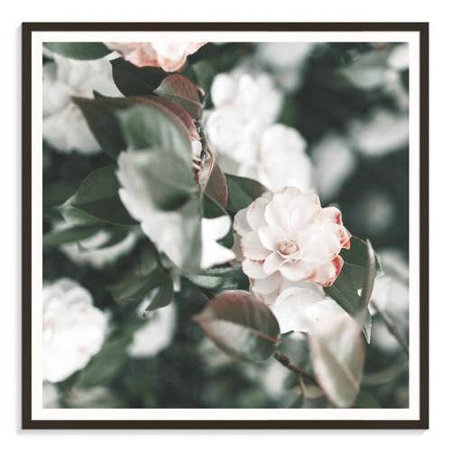 Our Artists' Collection Pale Petals Printed Wall Art