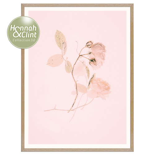 Our Artists' Collection Pink Lovely Printed Wall Art