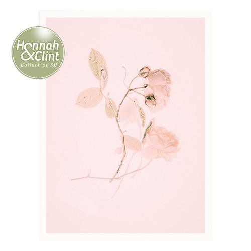 Pink Lovely Wall Art by Nikol Wikman