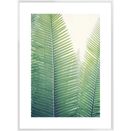 Spyglass Gallery Tropical Plaza Framed Printed Wall Art