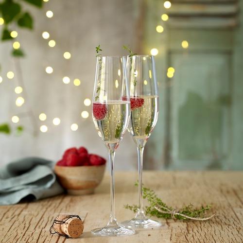 Noritake Bel Vino 210ml Champagne Flutes