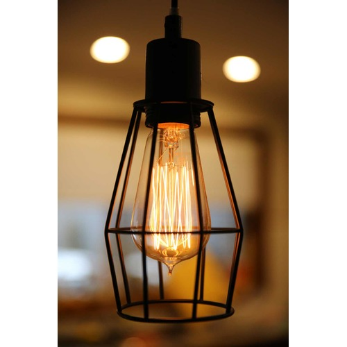 Lexington Home Wire Cage Industrial Pendant Light
