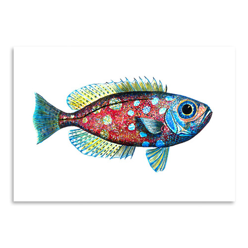 Americanflat Glass Eye Snapper I Printed Wall Art