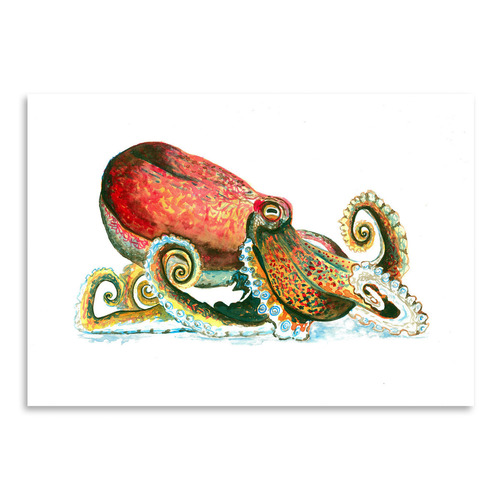 Americanflat Octopus I Printed Wall Art