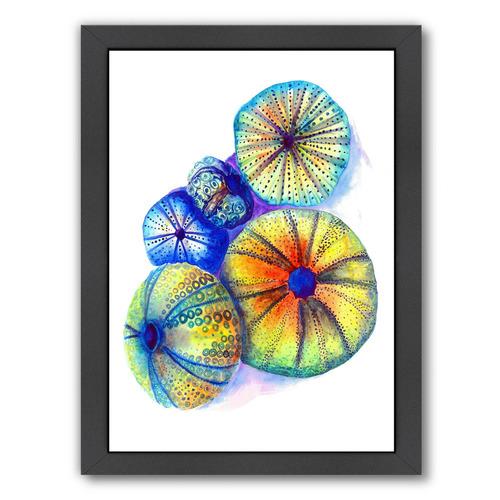 Urchins Printed Wall Art