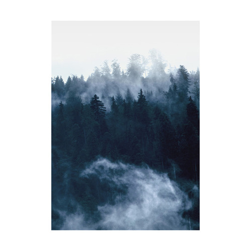 Americanflat Misty Woodland Printed Wall Art