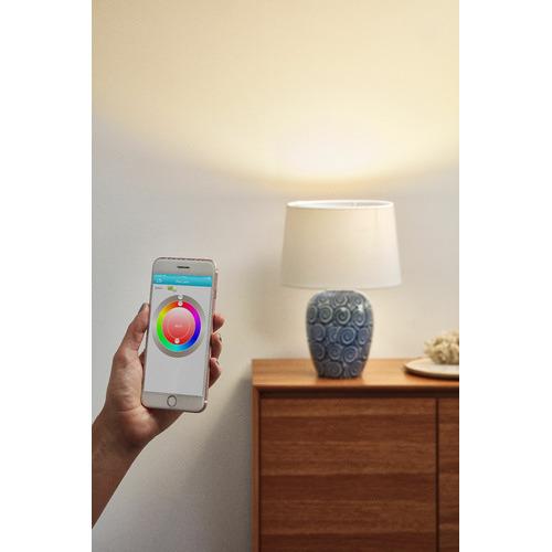 Zander Lighting Pippi Complete Table Lamp