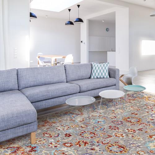 Home & Lifestyle Multi-Coloured Mau Distressed Rug