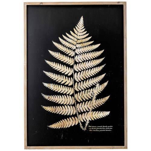 Filix Arborea in Nature Framed Printed Wall Art
