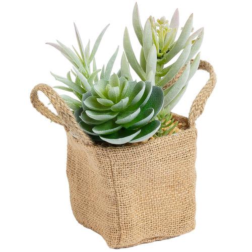Linea Furniture 19cm Faux Succulents in Cloth Bag