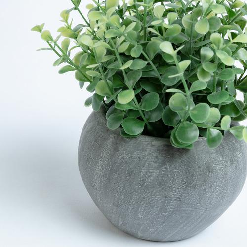 Linea Furniture 19cm Potted Faux Eucalyptus Plant
