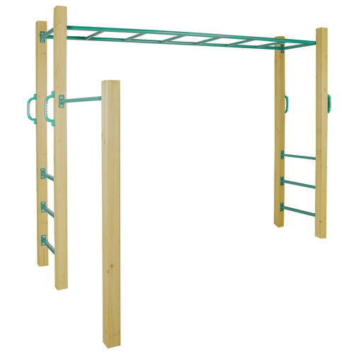 Amazon Monkey Bars Temple Amp Webster