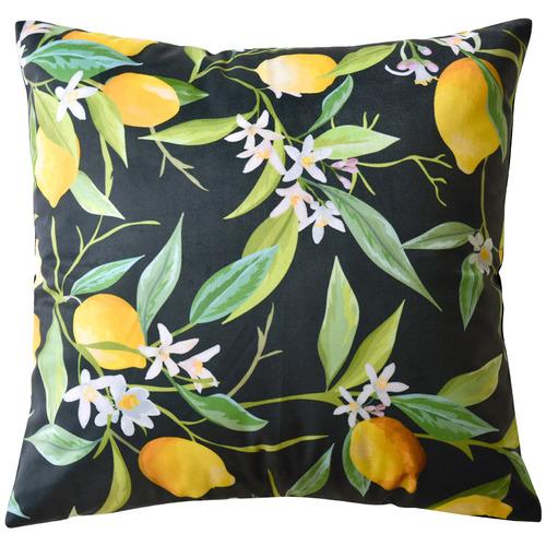 Black Lemons Coordinate Velvet Cushion