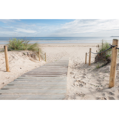 Art Illusions Beach Path Canvas