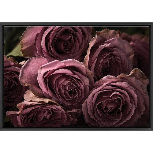 Art Illusions Blush Roses Canvas