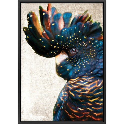 Art Illusions Black Cockatoo Side Grunge Printed Wall Art