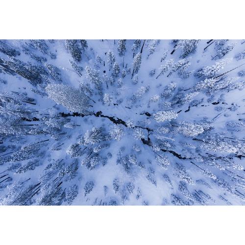 Art Illusions Winter Wonderland Canvas Wall Art