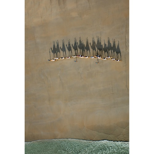 Art Illusions Broome Camel Train Canvas Wall Art