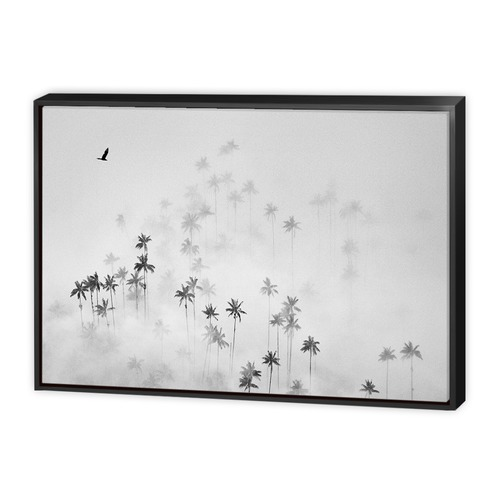 Art Illusions Cocora Valley Canvas Wall Art