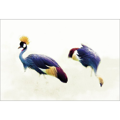 Art Illusions Grey Crowned Cranes Canvas Wall Art