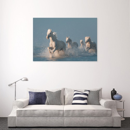 Art Illusions Angels of Camargue Canvas Wall Art by Anton Rostovskiy