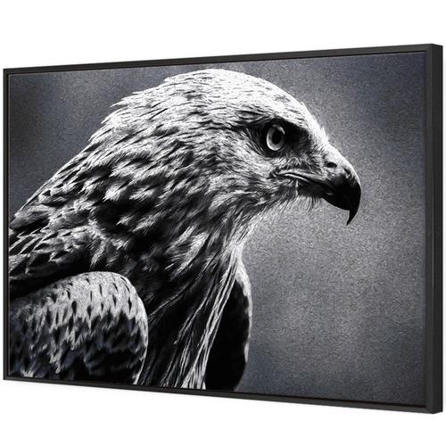 Art Illusions Bird of Prey Canvas Wall Art