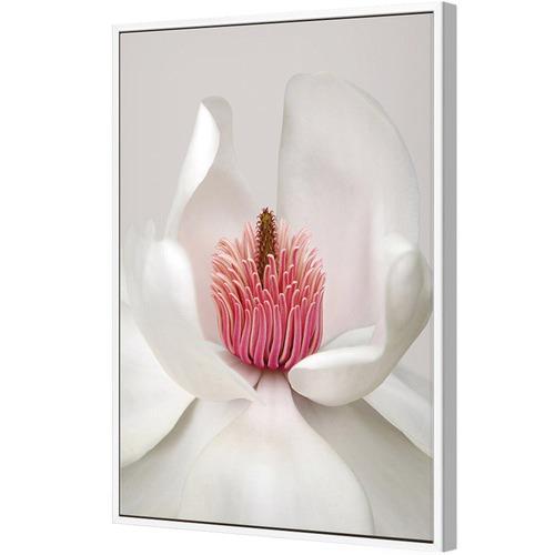 Art Illusions Magnolia Canvas Wall Art