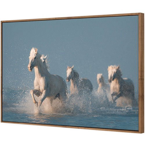 Angels of Camargue Canvas Wall Art by Anton Rostovskiy