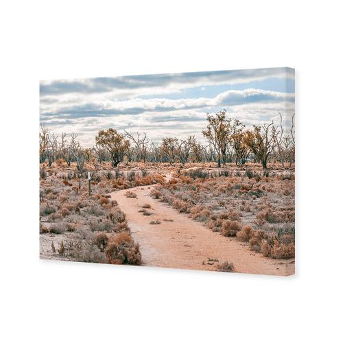 Art Illusions Eucalyptus Pathway Canvas Wall Art
