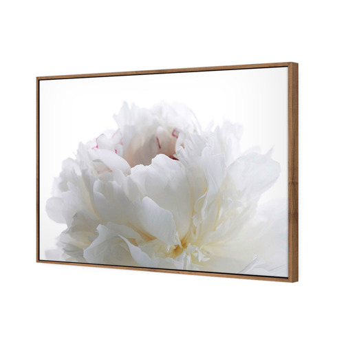 Art Illusions White Peony Blooming Canvas Wall Art