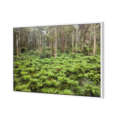 Art Illusions The Gap Scenic Reserve Canvas Wall Art