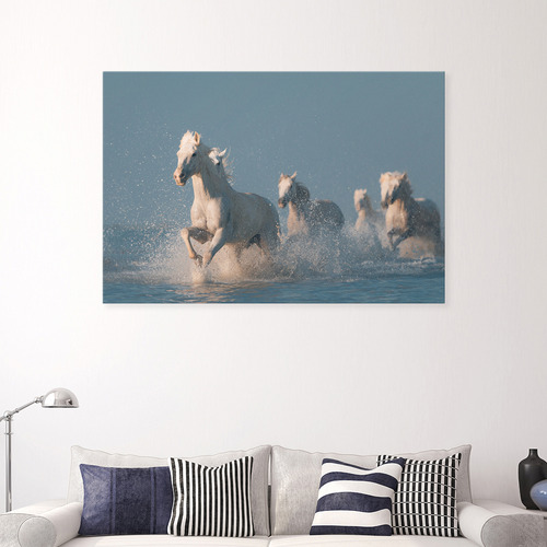 Angels of Camargue Canvas Wall Art