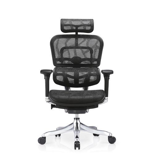 Milan Direct Ergohuman V2 Plus Deluxe Mesh Office Chair