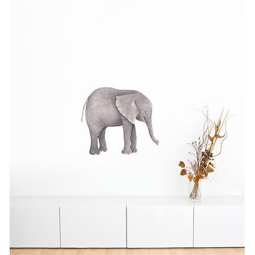 Little Sticker Boy Elephant On Its Own Wall Sticker