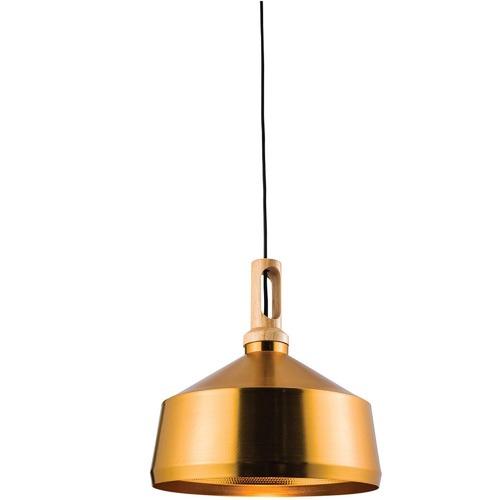Lexi Lighting Biorn Angled Pendant Light