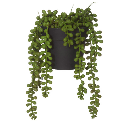 23cm Potted Faux String Of Pearls Plant