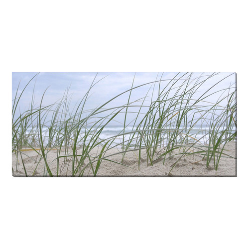 Seagrass Stretched Canvas
