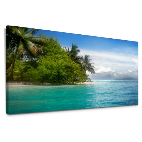 Next Island Canvas Wall Art